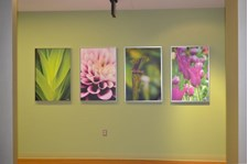 - Image360-Plymouth-CanvasArt&Signage-ProfessionalServices (2)